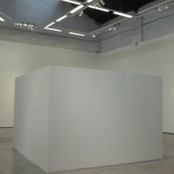 """""""意识行动"""",行为表演,2011年。"""