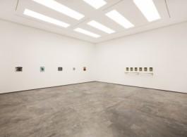 Elad Lassry - 01 White cube