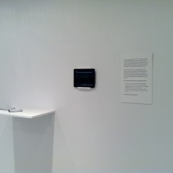 "Gei Fei/ Lin Zhen, ""Sunbath Goes Viral,"" ipad, wifi connections, CDs, dimensions vary, 2012"