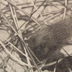 """Nabuqi, """"Untitled, #22"""", pencil on paper, 160 x 250 cm, 2012 (detail) 娜布其,《无题之二十二》,2012,纸上铅笔,160 x 250 cm(细节)"""