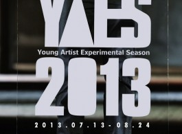 A4 gallery CD - Young artist 1st