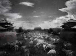 Art + SH - Beijing.Beijing-03 2012 105x70cm