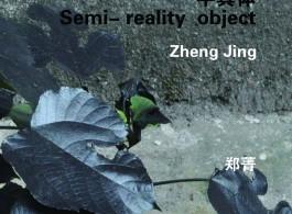 gallery 55 SH - Zheng jing post