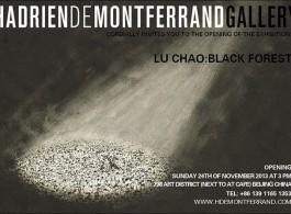 "Lu Chao ""Black Forest"" post 陆超《黑森林》海报"