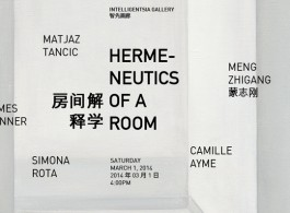 hermeneutics of a room flyer_905