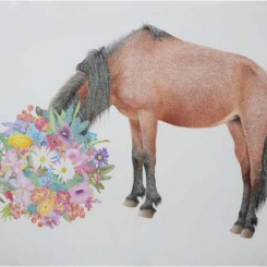 """马,"" 纸上彩色铅笔, ""Horse,""color pencil on paper, 58x77cm, 2012"