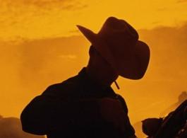 Cowboys_00335 001