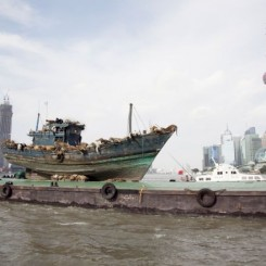 "Cai Guo-Qiang, ""The Ninth Wave"", 99 reproductions of animals, wooden fishing boat, white flag, 1700 x 455 x 580 cm, 2014蔡国强,""九级浪"",99只真实大小的动物复制品、木制渔船、小白旗、电风扇船: 1700 x 455 x 580厘米, 2014(Photo by Wen-You Cai, courtesy Cai Studio; 蔡文悠摄,蔡工作室提供)"