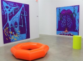 Exhibition view at the Rubell Family Collection