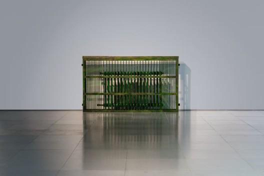 Installation view of Wang Wei,