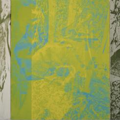 刁德谦,《双龙 》,1999,布面丙烯、丝网印刷,183 x 396.5 厘米。私人收藏。 David Diao, Twin Dragons, 1999, acrylic and silkscreen on canvas, 183 x 396.5 cm. Private Collection