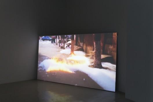 "Liu Chuang, ""BBR1 (No.1 of Blossom Bud Restrainer) No.2"", Video, 8 mins, 2015, Courtesy the artist and Magician Space刘窗,《BBR1(抑花一号)No.2》,录像,8′25′′,2015@魔金石空间"