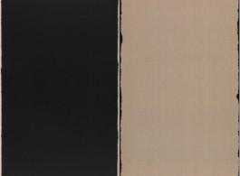 photo: Burnt Umber & Ultramarine (Diptych), 2001, oil paint on linen, each panel 145 x 89 cm.