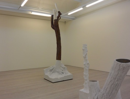 Giuseppe Penone at Marian Goodman, Soho