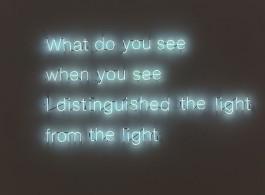《从光中分辨光》,霓虹灯管,130×240cm,2013