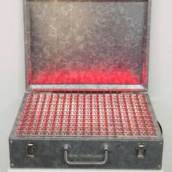 刘辛夷《平天下》 2013,装置艺术,39 × 30 × 11 cm 图片由MDC画廊、空白空间提供