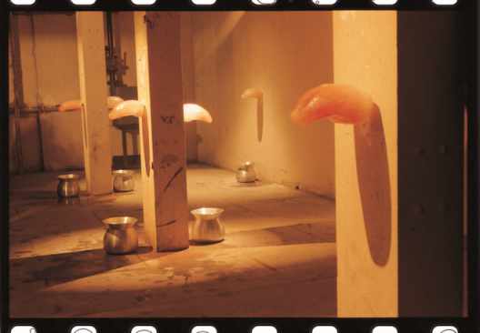 白费口舌,冰、刀,尺寸可变,1994