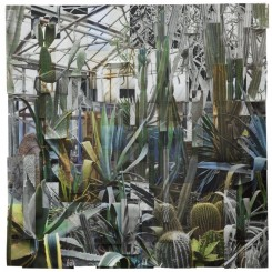Greenhouse 3, 2017,  Archival pigment print 43 1/4 x 98 3/8 inches (110 x 250 cm), Image courtesy of Klein Sun Gallery and the artist, © Ji Zhou.