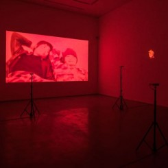 "APICHATPONG WEERASETHAKUL,""Haiku"", Single-channel video,HD digital stereo (shown here in silent), color,1 minutes 58 seconds,2009;""The Palace (Pipittapan Tee Taipei)"", 5-channel video installation (selected 3 pieces for the exhibition) digital, silent, color,Various lengths,2007(courtesy of Apichatpong Weerasethakul and ShanghART Gallery, photographer Alessandro Wang) 阿彼察邦·韦拉斯哈古,《俳句》, 单路视频 高清数码立体声(展览中为无声), 彩色 , 2009;《宫殿(台北国立故宫博物院)》,五屏影像装置(展览选择其中三件) , 数码, 无声, 彩色,不同时长,2007(图片来自艺术家阿彼察邦•韦拉斯哈古以及香格纳画廊,摄影师为Alessandro Wang)"