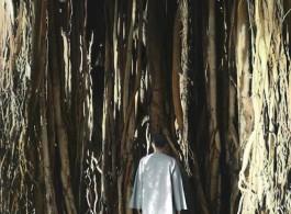 Youssef Nabil, Untitled, Self-portrait, Hawaii 2013, 2013. Hand colored gelatin silver print, 56,5 x 43,5 cm (22 1/4 x 17 1/8 inch) Courtesy Youssef Nabil & Galerie Nathalie Obadia Paris/Bruxelles