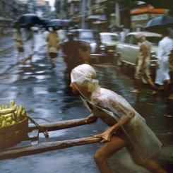 "Brian Brake. Crawford Market, Mumbai, India, 1960. From the series ""Monsoon"". Collection Museum of New Zealand Te Papa Tongarewa, gift of Wai-man Lau, 2001. 布莱恩•布瑞克,季风系列之《克劳福市集,印度孟买》,1960。新西兰国家博物馆藏品。刘惠文先生于2001年捐赠。"