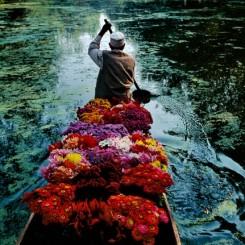 Steve McCurry.  Flower seller at Dal Lake, Srinagar, Kashmir, 1996.  © Steve McCurry. 史蒂夫·麦凯瑞,《德尔湖上的花贩,喀什米尔斯里那加》,1996 © 史蒂夫·麦凯瑞