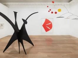 Installation view, Calder / Kelly. Photo: Tom Powel Imaging. All Alexander Calder artworks © 2018 Calder Foundation, New York / Artists Rights Society (ARS), New York. Courtesy Calder Foundation, New York. All Ellsworth Kelly artworks © Ellsworth Kelly Foundation. Courtesy Ellsworth Kelly Studio.