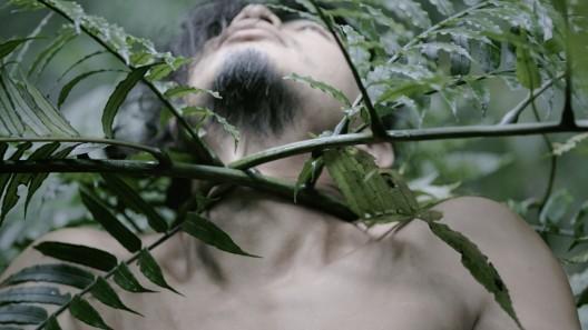 ZHENG Bo, Pteridophilia 3, 2018. Video (4K, color, sound); 15 min. Courtesy of the artist. 郑波,《蕨恋3》,2018。录像(4K,彩色,有声);17分钟。感谢艺术家提供图片。