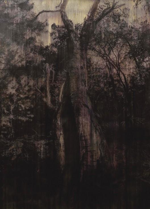 Michael Joo, Entasis (phloem), 2016, Silver nitrate and epoxy ink on canvas, 335.3x243.8cm, 迈克尔·朱_卷杀(韧皮部)硝酸银油墨画