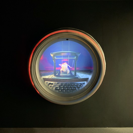 """""""Tom"""",  a video installation featuring a headless chicken and a keyboard, by MOTSE"""