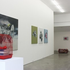 Chonggang Du: Uncertain, 12 September - 20 October 2012
