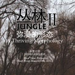 platform China - Junkle poster
