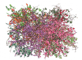 "Jennifer Steinkamp, ""Bouquet 1"", video installation, dimensions variable, 2013. Courtesy of the artist and Lehmann Maupin, New York and Hong Kong Jennifer Steinkamp,《Bouquet 1》, 录像装置,尺寸可变, 2013 ,图片由艺术家及乐曼慕品画廊(纽约及香港)提供"