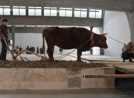 """Xiao Yu, """"Ground"""", view of the opening performance at Pace Beijing"""