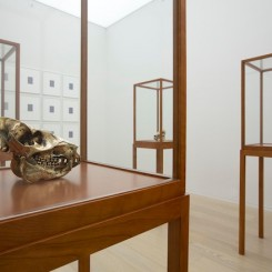Sherrie Levine (installation view), 2012 (image courtesy of Simon Lee Gallery)