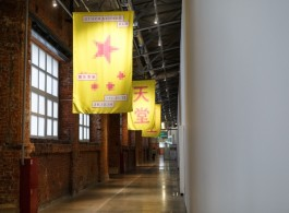 Installation View (Courtesy of artist and DSL Collection)