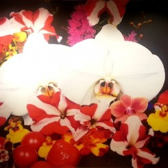 """Marc Quinn, Under the Volcano, 2011, oil on canvas, 278,5 x 504,5 cm """"The overwhelming sensuality of the natural world, whose life force is one of pure desire, the orchids meditate on the human obsession of ideal beauty, achieved through the manipulation, modification and control of nature.""""(Marc Quinn)"""