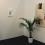 David Risley Gallery