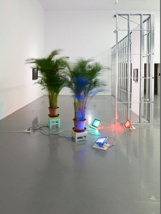 Trevor Yeung, Initial Ritual of Mr. Butterflies, Butterfly palm tree, LED light, spinner, Dimensions variable, 2015 杨沛铿,《蝴蝶先生的第一步》,蝴蝶棕榈树,LED灯,转盘,尺寸可变,2015