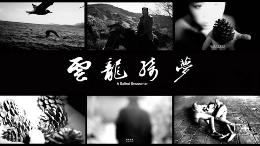 "袁可如,《云龙绮梦》,三屏影像装置/黑白,15分14秒,2014 Yuan Keru, ""A Salted Encounter"", Three-screen video installation, Black and white,15min14sec, 2014"