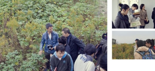 """Plants Living in Shanghai"", plants, open online course (MOOC), educational activities on eight Sundays, Xuhui District, Shanghai, 2013《住在上海的植物》,植物现场、网络课程、教育活动,上海市徐汇区,2013"