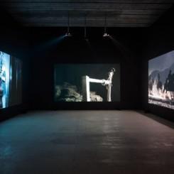 "程然,《热血、温血、冷血》, 展览现场, 2011  Cheng Ran, ""Hot Blood, Warm Blood, Cold Blood"", installation view, 2011"