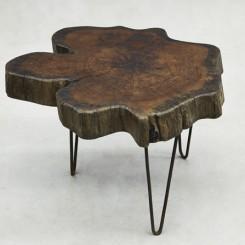 00 3_PJ_Tree Trunk Coffee Table