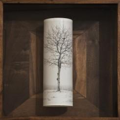 "Cai Dongdong, ""A Tree"", silver gelatin print, 40 x 31 x 9 cm, 2014 蔡东东, ""一棵树"", 明胶卤化银照片, 40 x 31 x 9 厘米, 2014"