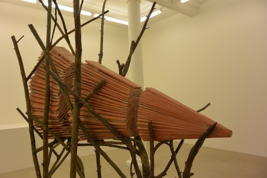 Giuseppe Penone at Marian Goodman 3