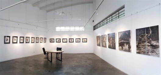 Shalini Ganendra Fine Art