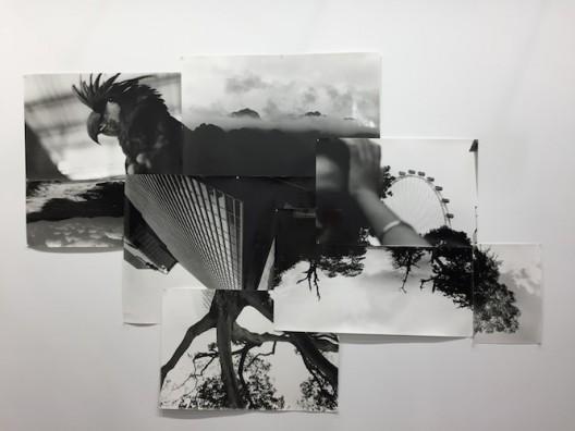 Birdhead at ShanghART (Ran Dian images)