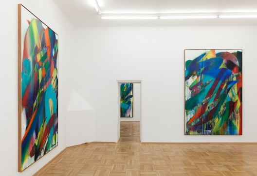 Installation view (courtesy the artist and Galerie nächst St. Stephan)