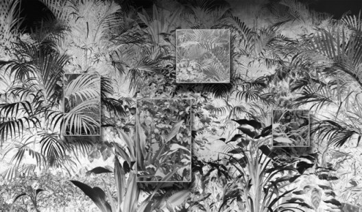 Plants Covered in Dust, 2017 Wallpaper, archival pigment print and wooden frames 139 x 237 inches (353 x 602 cm), Image courtesy of Klein Sun Gallery and the artist, © Ji Zhou.