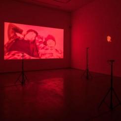 "APICHATPONG WEERASETHAKUL,""Haiku"", Single-channel video,HD digital stereo (shown here in silent), color,1 minutes 58 seconds,2009;""The Palace (Pipittapan Tee Taipei)"", 5-channel video installation (selected 3 pieces for the exhibition) digital, silent, color,Various lengths,2007(courtesy of Apichatpong Weerasethakul and ShanghART Gallery, photographer Alessandro Wang) 阿彼察邦·韦拉斯哈古,《俳句》, 单路视频 高清数码立体声(展览中为无声), 彩色 , 2009;《宫殿(台北国立故宫博物院)》,五屏影像装置(展览选择其中三件) , 数码, 无声, 彩色,不同时长,2007(图片来自艺术家阿彼察邦•韦拉斯哈古以及香格纳画廊,摄影师为Alessandro Wang)"
